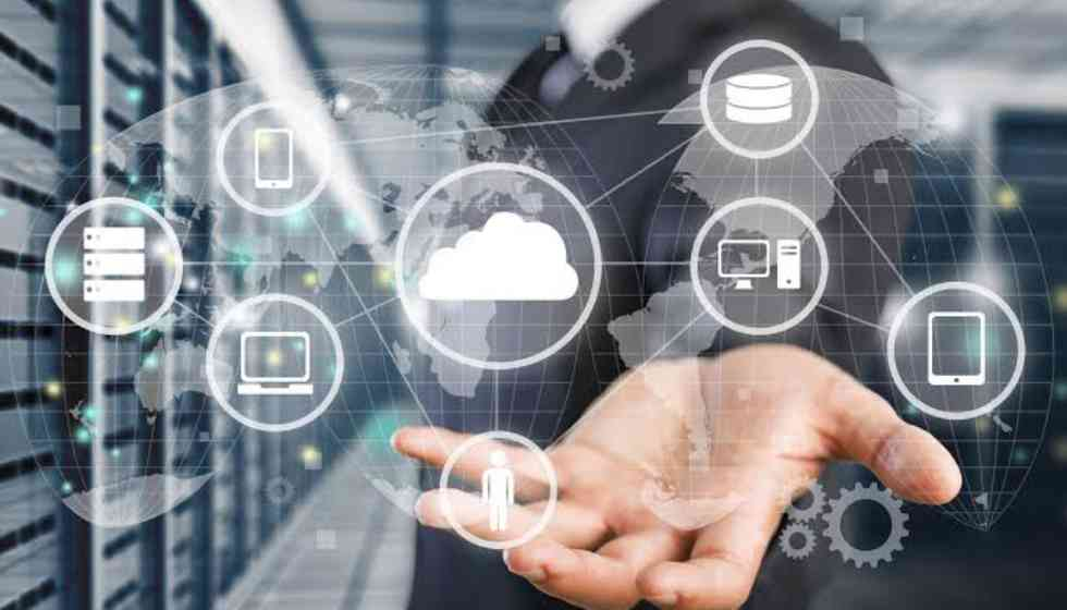 5 Reasons Why Network Management Is Essential for Business Growth